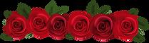 Rose 6 - Tehja Avanni Goddess Healing Sa