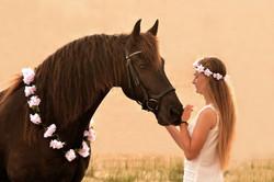 Anke van Wyk Equine & Pet Photography