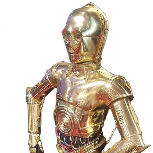 C-3PO Full Suit