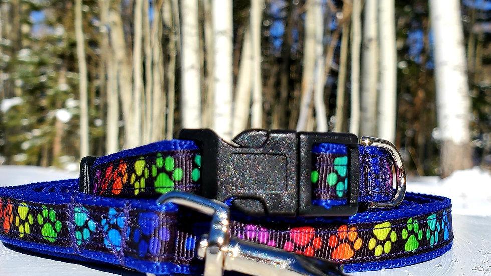 "1/2"" Rainbow Paws Dog Collar, Leash, or Harness"