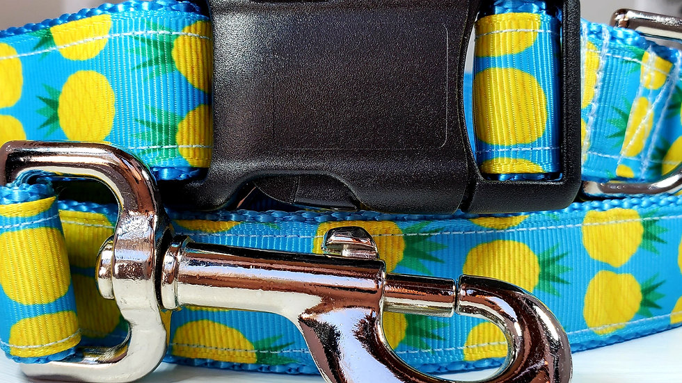 """1"""" Pineapple Dog Collar, Martingale, Harness, and Leash"""