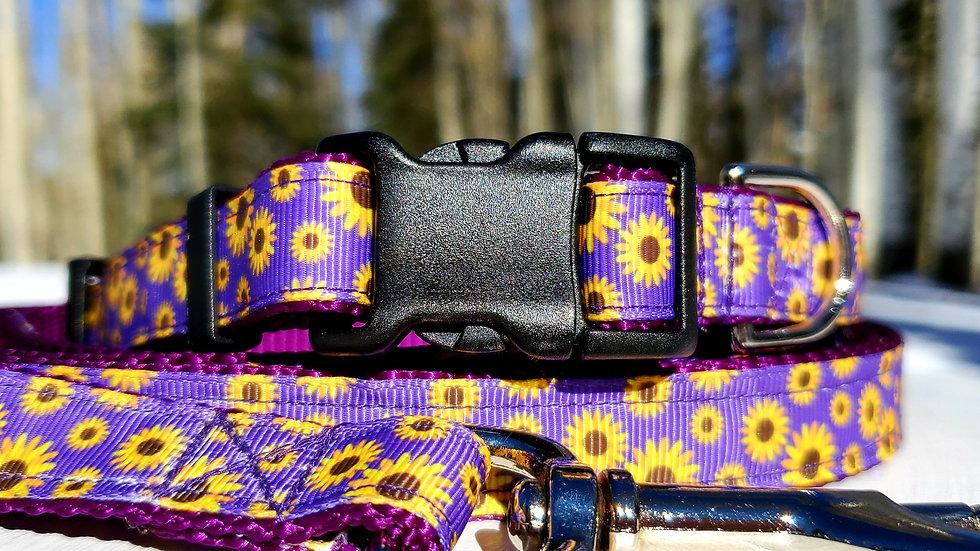 "3/4"" Purple and Yellow Daisy Dog Collar, Leash, Martingale, Harness"