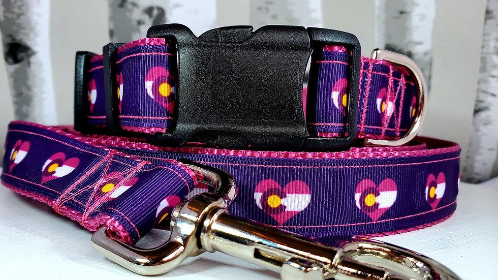 "1"" Pink or Purple Colorado Dog Collar, Martingale, Harness or Leash"