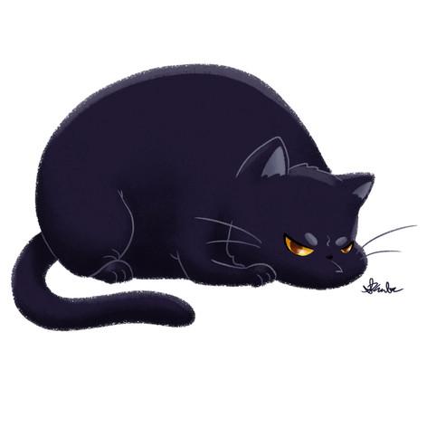 Chubby Grumpy Kitty (Black)