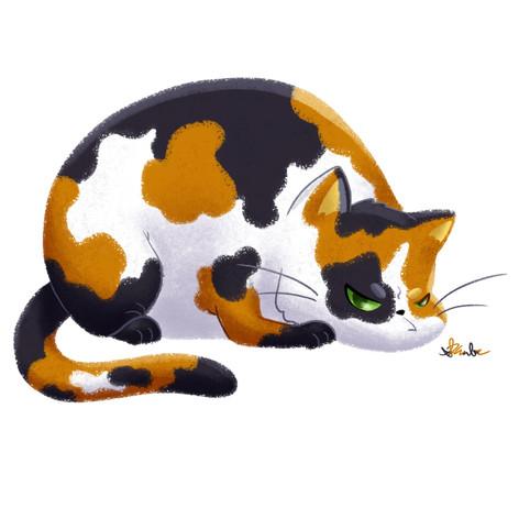 Chubby Grumpy Kitty (Calico)