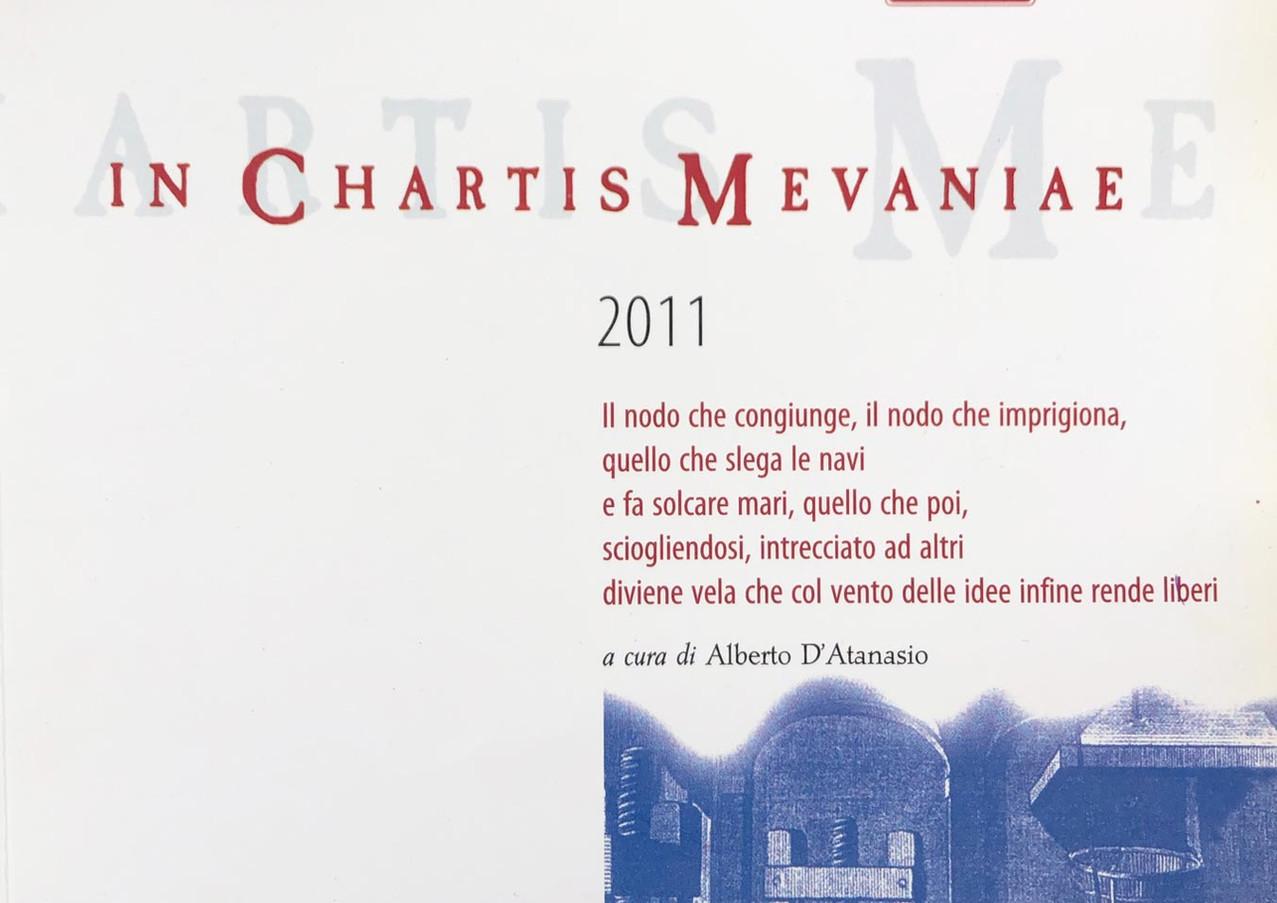 2011 - In Chartis Mavaniae