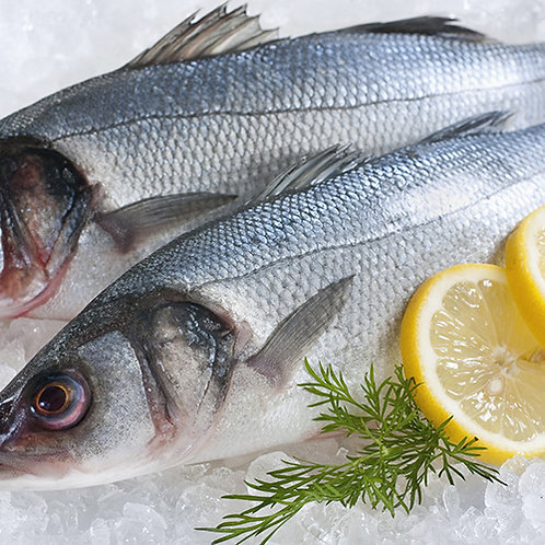 Spigole pescate a mare 800 - 1500gr