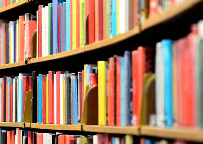 library-shelf_a4e97dd0a828fbd49085d6ce30