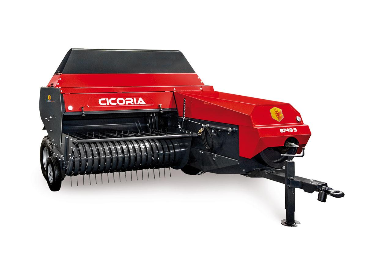 Cicoria 8749 S