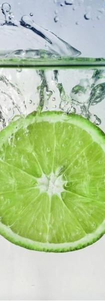 Vitamina C e os benefícios para nossa saúde