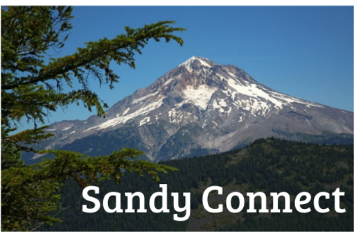 Sandy Connect_edited.png
