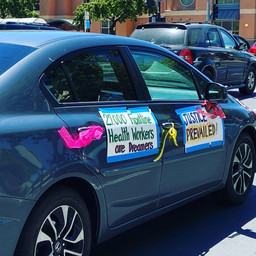 Car Rally through Sacramento Celebrating the Supreme Court's decision to uphold DACA