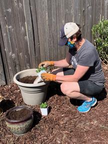P. Brandy Liebscher planting the herb garden