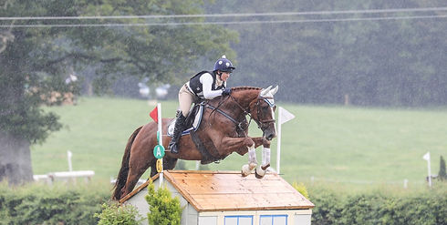 Dapple Eventing Collection