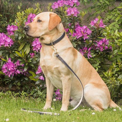 Dapple Equestrian Navy & Cream Luxury Leather Dog Collar and Lead Set
