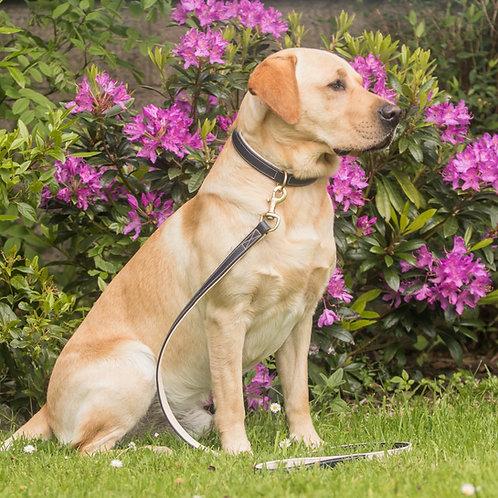 Dapple Navy & Cream Luxury Leather Dog Collar and Lead Set