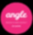 Angle logo 2016 FINAL_Signage.png