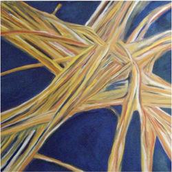 axonesneuronales.jpg
