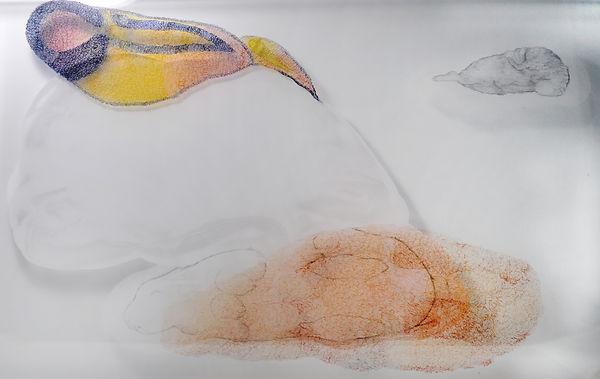 陳代如.月兔之五.40cmX65cm.有機玻璃.鉛筆.丙烯顏料.麥克筆.2020
