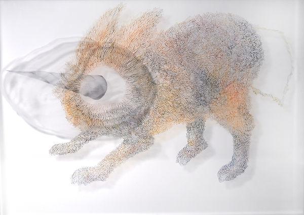 陳代如.月兔之六.30cmX40cm.有機玻璃.鉛筆.丙烯顏料.麥克筆.2020