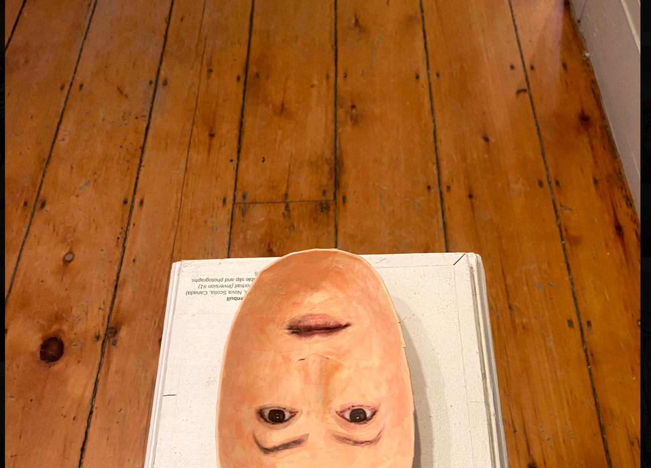 Self Portrait (Inversion#1)- pic 2.png