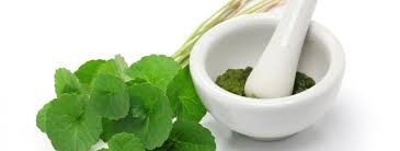 Healing and Rejuvenating Skin Care with Centella Asiatica
