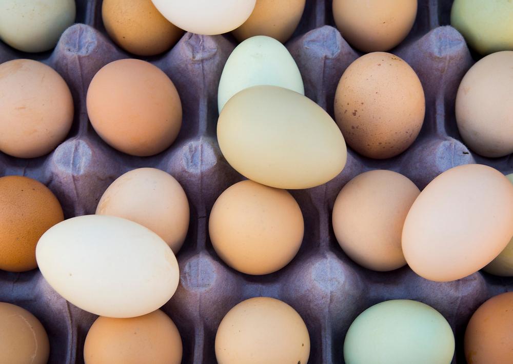 uova provenienti da galline di razze autoctone