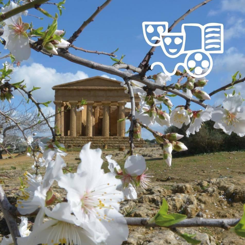 Un mandorlo in fiore nelle terre siciliane, un tempio greco sullo sfondo