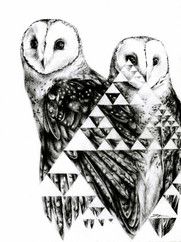 Owls and Triangles copy_edited_edited.jp