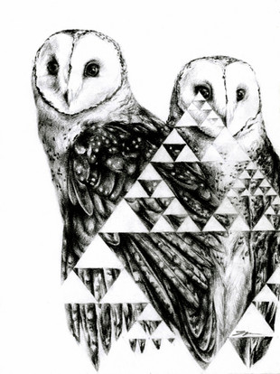 Sierpinski Owls
