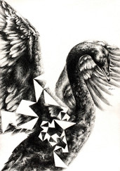 Black Swan Pentigree.jpg