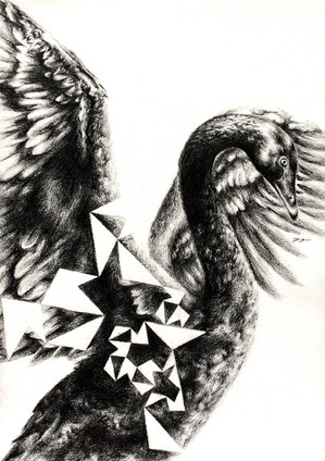 Black Swan Pentigree