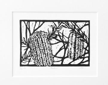Banksia EV 3 of 15.jpg