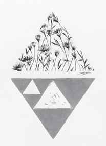 Sierpinski Variations Daisies.jpg