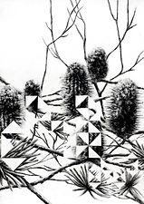 Dragon Amongst the Banksias.jpg