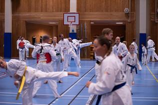 UJU Taekwondo-65.jpg