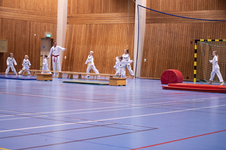 UJU Taekwondo-20.jpg