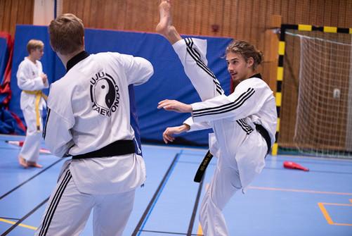 UJU Taekwondo-86.jpg