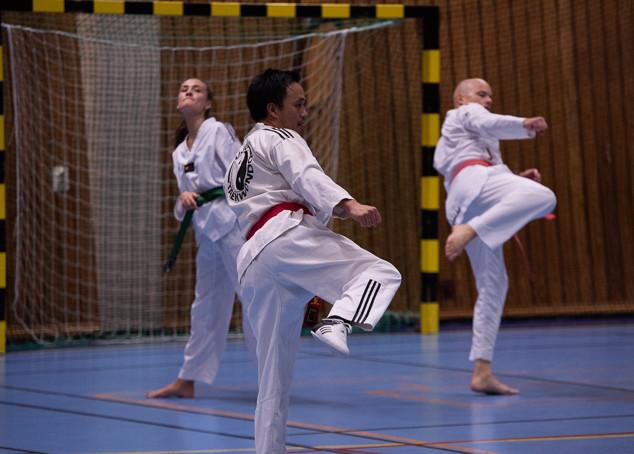 UJU Taekwondo-66.jpg