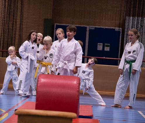 UJU Taekwondo-161.jpg
