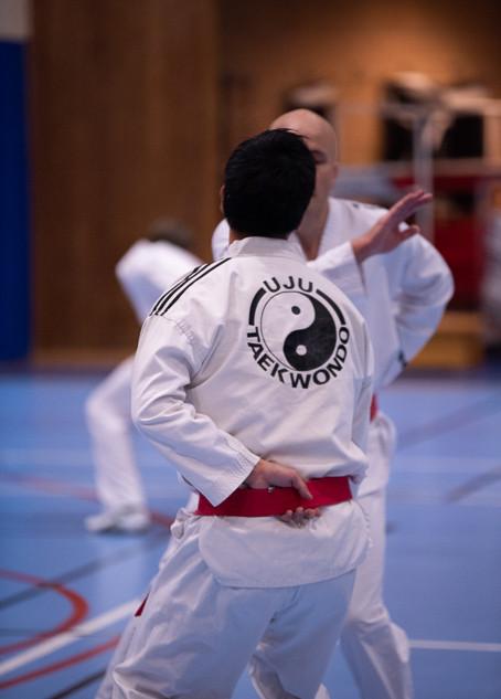 UJU Taekwondo-52.jpg