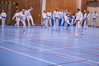 UJU Taekwondo-79.jpg