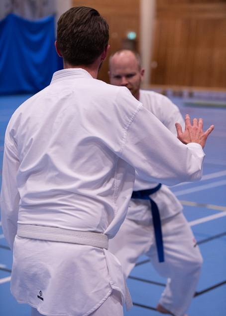 UJU Taekwondo-35.jpg
