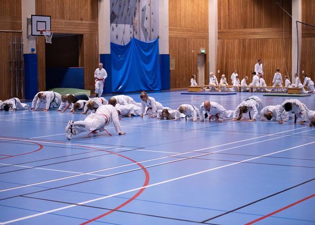 UJU Taekwondo-63.jpg