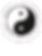 UJU-TAEKWANDO-Vectroiserad-Vit-text.png