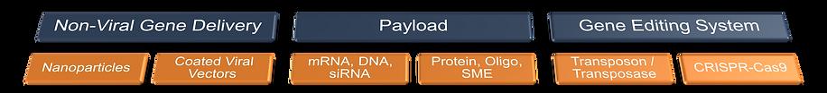 Platform payload.png