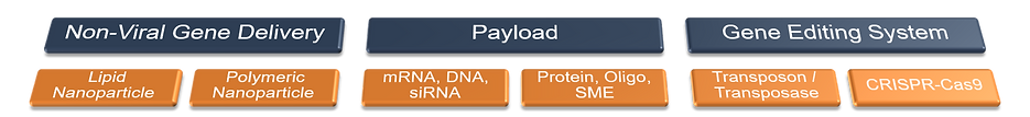 Payload Gene Editing.png