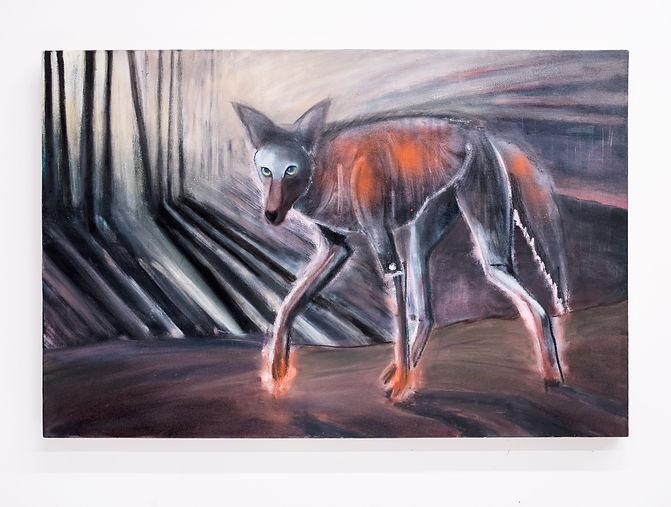 Coyote_web.jpg