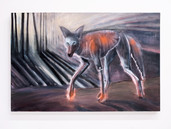 """""""Coyote"""" oil on canvas, 30"""" x 48"""", 2021. $2500"""