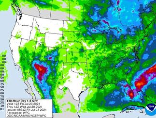 Soja segue em queda nesta 6ª feira e olha pra chuvas melhores nos EUA